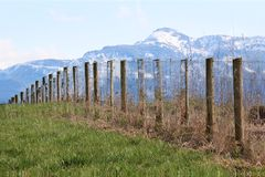 Mountain Fence Stock Images