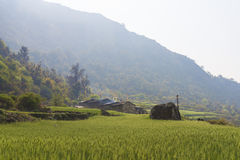 Mountain fields and village Royalty Free Stock Images