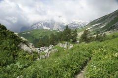 Mountain Fisht. Caucasus. Royalty Free Stock Photo