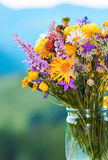 Mountain flowers bouquet royalty free stock photography