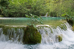Mountain flowing stream or wild water amaongst the stones Stock Image