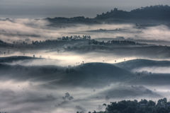 Mountain and fog. At  tropical zone Stock Photography