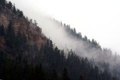 Mountain Fog royalty free stock photo