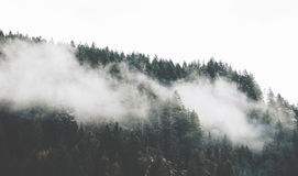Mountain With Fog Royalty Free Stock Photography