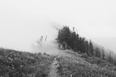 Mountain fog Stock Photography