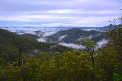 Mountain fog. Foggy mountain view from Mount Nebo, near Brisbane, Queensland, Australia Royalty Free Stock Image