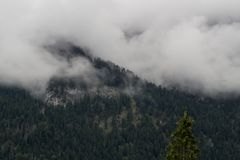 Mountain in fog stock photography