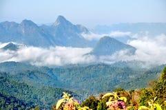 Mountain and fog stock photos