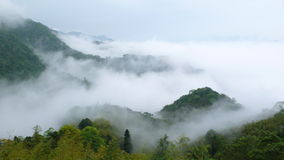 Mountain and fog. Mountain which is surrounded by fog Royalty Free Stock Photos