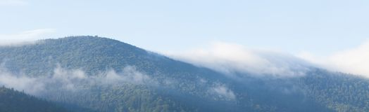 Mountain foggy background, forest fog, mist landscape stock photography