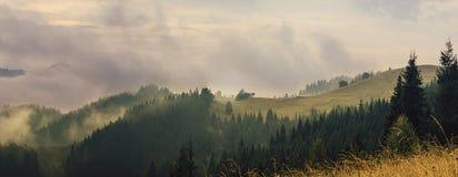 Mountain foggy sunrise Stock Images