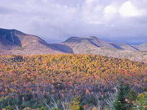 Mountain Foliage. White Mountain in colorful fall Stock Photography