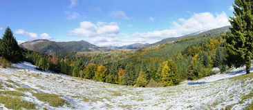 Mountain forest. With first winter snow Stock Image