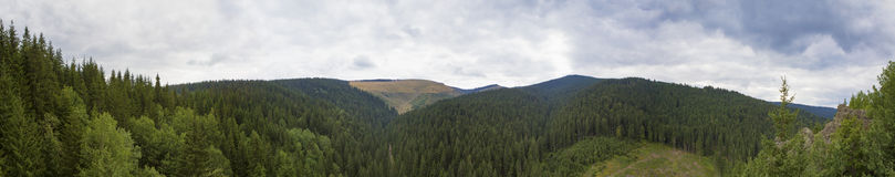 Free Mountain Forest Stock Images - 68250274