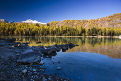 Mountain and forest. Forest and Mountain reflecting in a lake Stock Photos