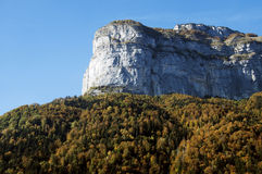 Mountain and forest at autumn. Mountain and forest of fir tree and deciduous trees in autumn in Aravis, France Royalty Free Stock Image