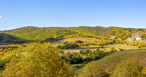 mountain forest in the autumn Royalty Free Stock Images