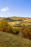 mountain forest in the autumn Royalty Free Stock Photos