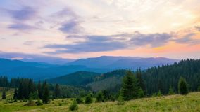 The Mountain Forest on Background of Sunset stock video
