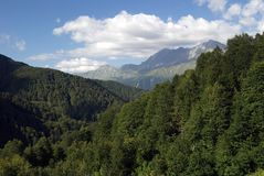 Mountain forest of the Caucasian Biosphere Nature Reserve. A view of the mountains covered with a dense green forest, in the Caucasian Reserve stock images