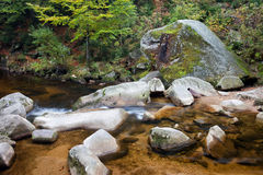Mountain Forest Creek Royalty Free Stock Photo