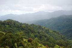 Mountain forest. Mountain and dense forest at Khun Nam Yen viewpoint, Mae Wong National Park, Kampangphet, Thailand Royalty Free Stock Image