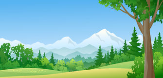 Mountain forest. Illustration of a mountain forest royalty free illustration