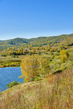mountain forest and lake in the autumn Royalty Free Stock Images