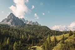 Mountain forest landscape Royalty Free Stock Photo