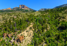 Mountain Forest Landscape Stock Image