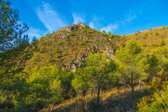 Mountain forest landscape, Spain. Stock Images