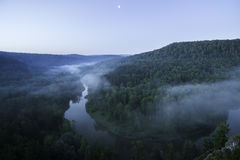 Mountain forest landscape. Trees and the river in the fog in the early morning. Royalty Free Stock Photography