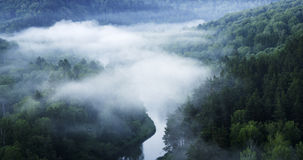 Mountain forest landscape. Trees and the river in the fog in the early morning. Panorama. Stock Image