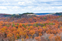 Mountain forest in late autumn. View of mountain forest in late autumn. Red River Gordge, Kentucky royalty free stock photography