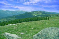 Mountain forest meadow and peaks Royalty Free Stock Image