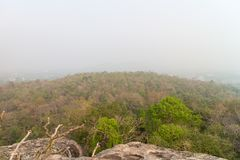Mountain and forest with the mist. In the morning Royalty Free Stock Photo