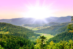 Mountain, forest. Mountains covered with forests, before sunset royalty free stock photo