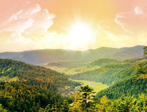Mountain, forest. Mountains covered with green forest royalty free stock photography