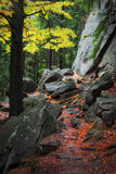 Mountain Forest Path in Autumn Stock Photo