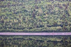 Mountain forest with reflection. In water of Hardanger fjord, Norway Royalty Free Stock Image