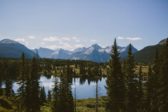 Mountain and forest scene Royalty Free Stock Photography