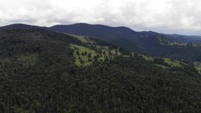 Mountain forest scene, view from above stock video footage