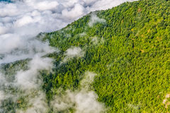 Mountain forest in sky Stock Photos