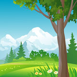 Mountain forest square background. Illustration of a mountain forest Stock Photos