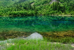 Mountain, Forest and Their Reflections Stock Photo