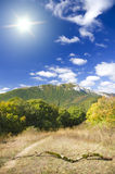 Mountain forest under blue sky. Royalty Free Stock Images