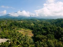 Mountain and forest view with rice terrace on Bali royalty free stock photos