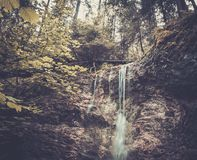 Mountain forest Royalty Free Stock Photography