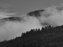 Mountain forests in clouds bw Royalty Free Stock Images