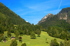 Mountain Forests - Valbruna Tarvisio Italy Royalty Free Stock Photo